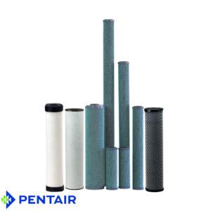 Special Filter Cartridges Pentek